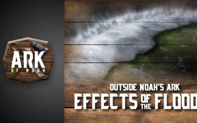 """Outside Noah's Ark"" – Effects of the Flood"